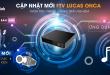 fpt đà lạt - truyền hình fpt cập nhật mới ftv lucas onca